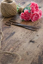 Pink carnation flowers with rusty antique scissors bouquet of old and ball of brown twine Royalty Free Stock Images