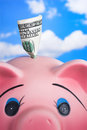 Pink Ceramic Piggy Bank Stock Photography