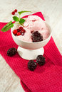 Pink colored cranberry fruit ice cream indoors closeup with mint and blueberries in white porcelain bowl Royalty Free Stock Photography