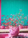 Pink cooked terra cota pot with red and pink flowers, house front with pink and green color