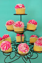 Pink cupcakes on aqua background Royalty Free Stock Photos