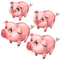 Pink cute shy pig in cartoon style. Vector animal