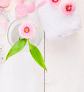 Pink daisies with a glass of water and a white towel top view spa background space for text Royalty Free Stock Image