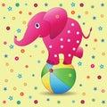 Pink elephant on a ball.