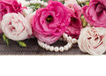 Pink eustoma flowers and pearls border isolated on white background Stock Image