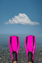 Pink fins looking at a blue sea past a pair of Stock Photo