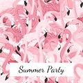 Pink flamingo birds crowd group summer party