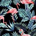 Pink flamingo blue jungle
