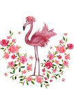 Pink Flamingo and Floral wreath Hand drawn Watercolor isolated
