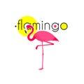 Pink flamingo resort emblem flat icon dancing elegant national sunny symbol logo print abstract vector illustration Stock Photography