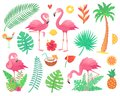 Pink flamingo and tropical plants. Beach palm, african plant leafs, rainforest flower, tropic palms leaf and rosy