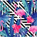 Pink flamingos and orchid