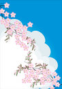 Pink flower branches on sky background Stock Photo