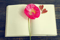 Pink flower of poppy on an open notebook and two decorative hearts. Royalty Free Stock Photo