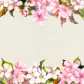 Pink flowers - apple, cherry blossom. Floral frame for postcard. Watercolour on paper background Royalty Free Stock Photo