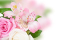 Pink flowers background with beautiful bouquet of Royalty Free Stock Photo