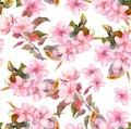 Pink fruit apple, cherry, sakura flowers. Seamless floral template. Aquarelle on white background Royalty Free Stock Photo