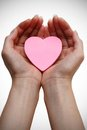 Pink heart. Health insurance or love concept Royalty Free Stock Images