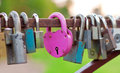 Pink heart-shaped lock Stock Image