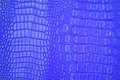 Pink leather blue crocodile texture Stock Images