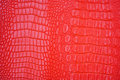 Pink leather texture of crocodile Royalty Free Stock Photo