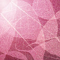 Pink  leaves texture background. Foliage decoration pattern. Royalty Free Stock Photo