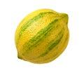 Pink Lemon isolated Royalty Free Stock Photo