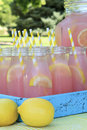 Pink Lemonade at Picnic in Park Royalty Free Stock Photo