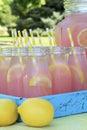 Pink Lemonade at Picnic in Park Royalty Free Stock Photo