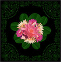 Pink lily flowers in green decorated frame Royalty Free Stock Photography