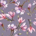 Pink magnolia flowers on a twig on grey background. Seamless pattern. Watercolor painting. Hand drawn. Royalty Free Stock Photo