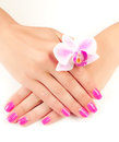 Pink manicure with orchid flower isolated female hands Royalty Free Stock Photo