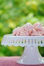 Pink meringues cake stand with handmade green background for copy space Royalty Free Stock Photo