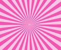 Pink modern stripe rays background. pink sunburst abstract. Royalty Free Stock Photo