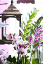 Pink orchid in flowershop beautiful flower shop decoration Royalty Free Stock Images