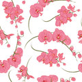 Pink orchid rococo seamless vector pattern Royalty Free Stock Photo