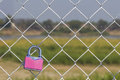 Pink padlock on metal fench Royalty Free Stock Photo