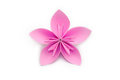 Pink paper origami flower on white background Royalty Free Stock Photo