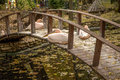 Pink Pelican resting on a wooden bridge across the lake in the a Royalty Free Stock Photo
