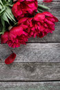 Pink peonies flowers on rustic wooden background. Selective focus Royalty Free Stock Photo