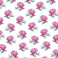 stock image of  Pink peony flower pattern