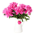 Pink peony flowers vase isolated white Royalty Free Stock Photos