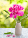Pink peony in vintage vase on table Stock Photo