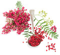 Pink peppercorn in a spoon Royalty Free Stock Photo