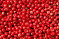 Pink  peppercorns background Royalty Free Stock Photography