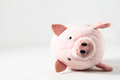 The pink pig Royalty Free Stock Photography
