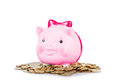 Pink the pig-coin box Royalty Free Stock Image