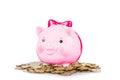 Pink pig-myntet asken Royaltyfri Bild