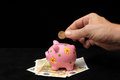 Pink pig piggy bank save money with one Stock Photography