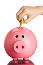 Pink piggy bank with australian dollars a piggybank in it on white Royalty Free Stock Photo